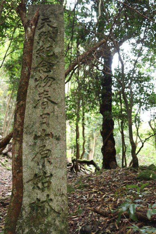 春日山原始林碑